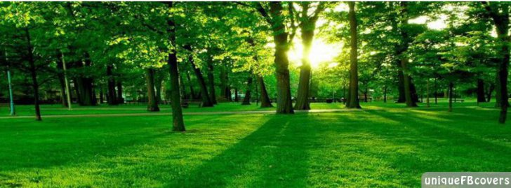 Nature Picture Facebook Covers | 3D Fb Cover - Facebook ...