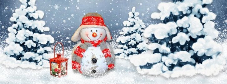 Funny Snowman Facebook Covers | Christmas Fb Cover ...