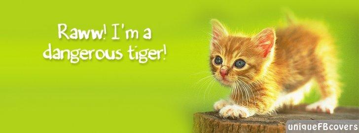 Raww Im A Dangerous Tiger