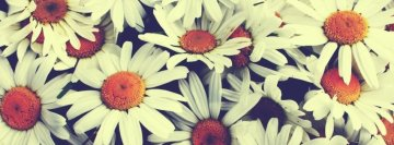 Girly Facebook Covers | Girly Fb Cover | Girly Facebook ...